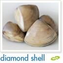 Cloudy Bay Clams - Diamond Shell 500g